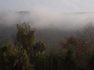 """Morgens vor dem """"Schlafzimmerfenster"""": Nebelberge von Ruanda (Donau)"""